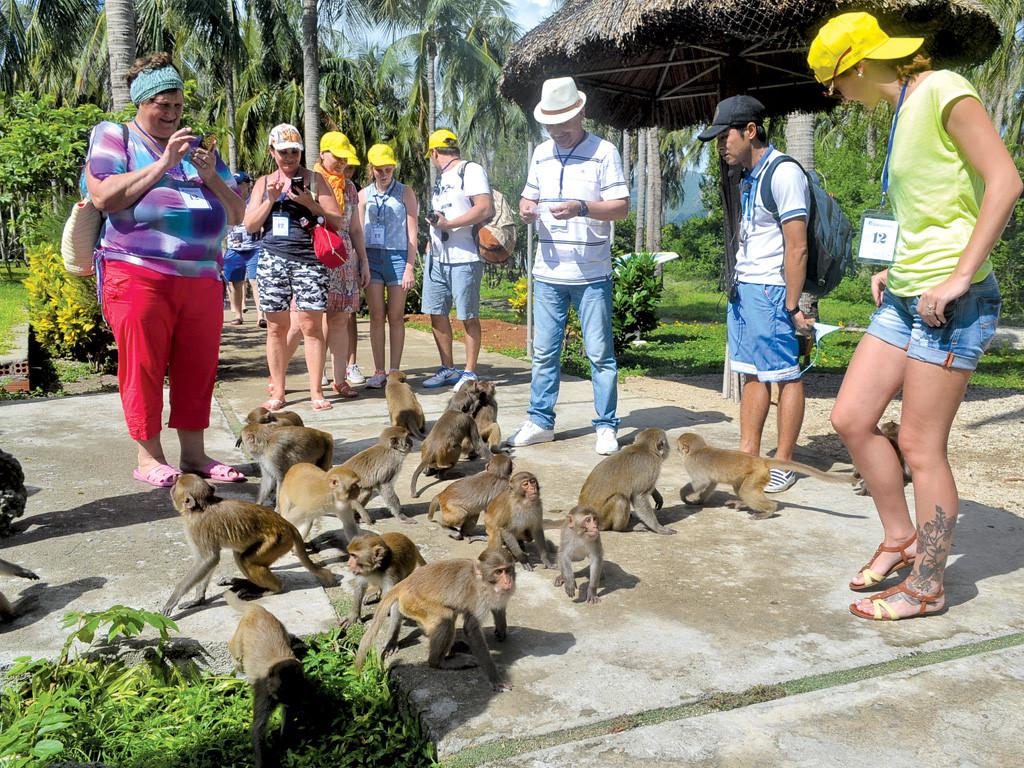 Tour đảo Khỉ + Suối Hoa Lan Nha Trang