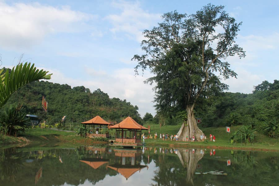Tour Thác Yang Bay
