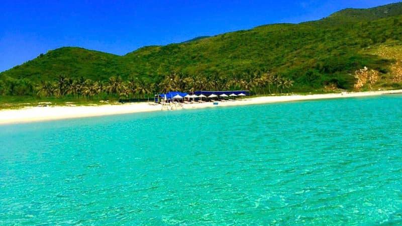 Tour Đảo Dừa